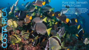 Pura Vida, Costa Rica diving, King angelfish, Solomon Baksh, Anne-Marie McNeil, Blue magazine