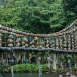 El Copey bridge, Cocos Island, Costa Rica