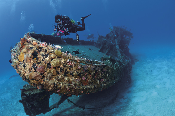 Marie L wreck, British Virgin Islands